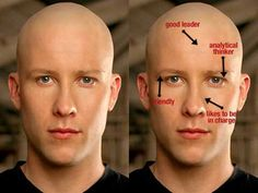 chinese face reading chart - Google Search. Lol!  On Mike's face?! @KD Eustaquio lutton