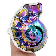 12g Titanium Ammonite 925 Sterling Silver Ring Jewelry s.9 SR171953   eBay