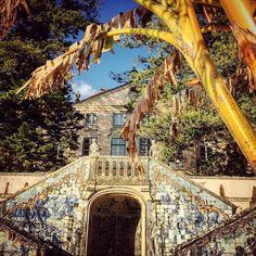 Tiled stairway at Palacio Marquês de Pombal. #art #architecture #history // #Oeiras #Lisboa #Portugal