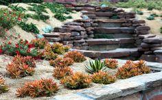 Singing Gardens, San Diego's landscape and garden designer hopes ...
