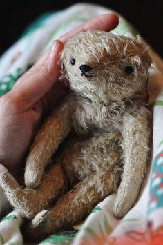 Is it just me or does this look like a sloth? It's so cute! The most adorable bear by the so-talented Jennifer Murphy! Old Teddy Bears, Antique Teddy Bears, My Teddy Bear, Jennifer Murphy, Sock Animals, Love Bear, Antique Toys, Vintage Toys, Old Toys