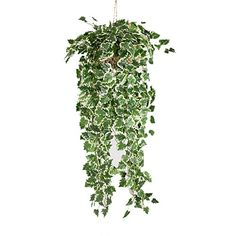 Meiliy 90CM Wall Hanging Artificial White Raisins Grape Ivy Vine Greenery Chain Foliage Simulation Flowers Plants For Home Room Garden Wedding Garland Outside Decoration 2 Bunches *** This is an Amazon Affiliate link. Read more reviews of the product by visiting the link on the image.