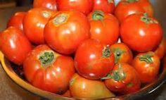 Pesquisa Formas de congelar tomates. Vistas 81852.