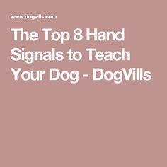 The Top 8 Hand Signals to Teach Your Dog - DogVills