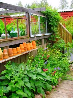 Romulyylin Puutarha / Romulyylis garden blog