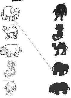 Логическая игра для детей «Угадай, где чья тень»