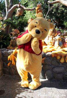 the Pooh Bear Disney Trips, Disney Parks, Walt Disney World, Disney Pixar, Cute Disney, Disney Dream, Disney Magic, Disney Fairies, Disneyland Paris