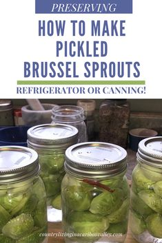 These zingy Pickled Brussel Sprouts are combined with hot peppers and garlic! Full recipe and canning instructions. Or make the Pickles and store in the fridge. #pickles #brusselsprouts #appetizers #condiments #canning