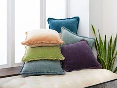 Winston Porter Highworth Washed Solid Border Cotton Throw Pillow Colour: Bright Purple, Size: x Fill Material: Polyester/Polyfill Velvet Throw, Velvet Throw Pillows, Trending Decor, Flat Woven Rug, Lime Material, Blue Throws, Throw Pillows, Cotton Throw Pillow, Decorative Pillows