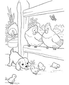 Farm animal chicken coloring page | Baby chicks and a puppy