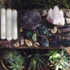 Plants, crystals & other objects from nature can energise your home