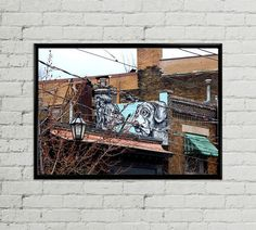 Beware of dog  8x12 Fine-Art print by VeniEtiamPhotography on Etsy