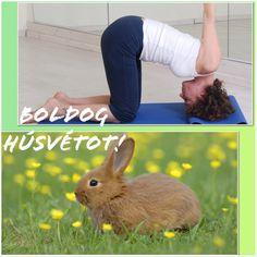 Áldott Húsvéti Ünnepet kíván a Spirituális Extázis Ezoterikus Jógaközpont! Spirituális Extázis Ezoterikus Jógaközpont Győr, Kisfaludy utca 2. http://tantra-yoga-gyor.hu/ https://www.facebook.com/tantra.yoga.gyor #Tradicionális #jóga #yoga #hatha #tantra #integrál #meditáció #önismeret #felszabadulás #megvilágosodás #Győr #önfejlesztés #spirituális #lélek