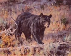 Paintings of the West including Texas. He has garnered praise for his paintings of North American wildlife and has been featured in numerous publications. Wildlife Paintings, Wildlife Art, Charcoal Sketch, Southwest Art, Commercial Art, Fine Art Auctions, Bear Art, Outdoor Art, Art Studies