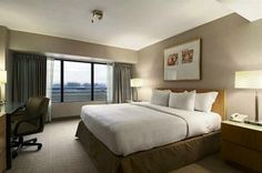 Compare and Choose - Hilton Los Angeles Airport