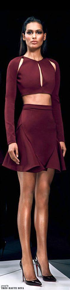 Cushnie et Ochs Pre-Fall 2014  http://www.style.com/  shoulder arm for dress