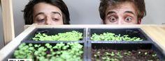 Makertutorial #1 - Der Käutergarten