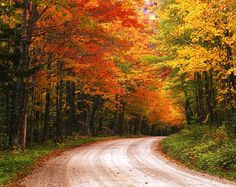 The 10 Best Places to See Fall Foliage #fall #autumn #autumntravel