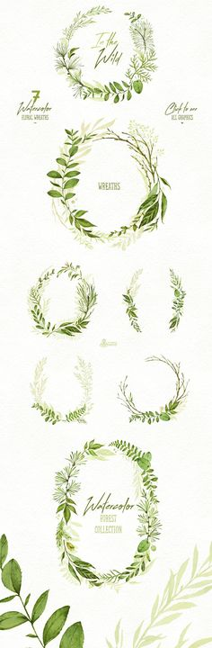 In the Wild. Forest Collection Watercolor Green Leaves wines PNg graphic download