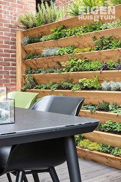 DIY: Zo maak je zelf een kruidentuin - Cottage Garden on the Rustic SideGreat idea for a wall full of edible's, salads, herbs Garden Great Ideas, Garden Inspiration, New Build Garden Ideas, Budget Garden Ideas, Back Gardens, Small Gardens, Wall Herb Gardens, Vertical Vegetable Gardens, Small Courtyard Gardens