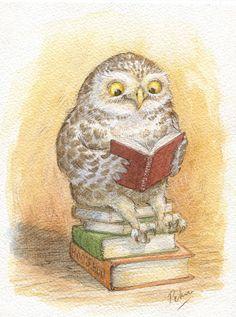 Petra Brown intelligent owl