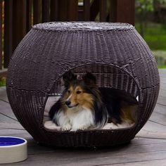 Igloo Pet Bed Indoor.