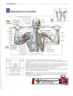 Ejercicios para hombros: Press trasnuca con barra. Más información en www.ejercicios.demusculos.com