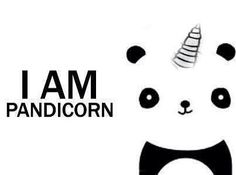 pandacorn Our chapter mascot is a panda!