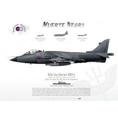 'Sea Harrier' FRS.1 006 Falklands JP-462