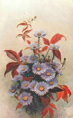 purple michaelmas daisies with yellow centres, surrounded by red/orange leaf sprigs Michaelmas Daisy, Orange Leaf, Site Design, Vintage Cards, Birthday Greetings, Decoupage, Art Projects, Flora, Leaves