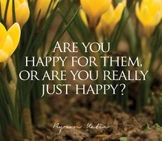Are you happy for them, or are you really just happy?   —Byron Katie