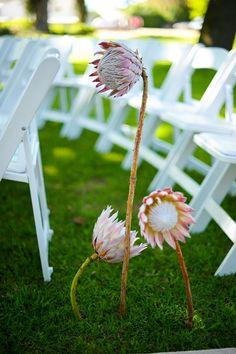 www.weddingconcepts.co.za Photo by: Jean-Pierre Uys