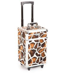 Cosmetic makeup nail hairdressing beauty vanity hair trolley case box storage FG