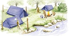 acampamento Férias? Acampamento? Julho????  www.saltoaltoemamadeiras.com.br