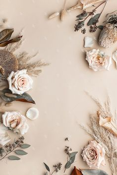 This image contains a soft mix of neutral florals on a light tan background. This image contains a soft mix of neutral florals on a light tan background. Flower Background Wallpaper, Flower Phone Wallpaper, Gold Wallpaper, Cute Wallpaper Backgrounds, Pastel Wallpaper, Pretty Wallpapers, Flower Backgrounds, Aesthetic Iphone Wallpaper, Aesthetic Wallpapers