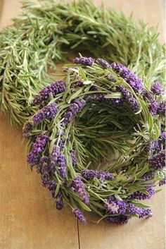 For the Love of Lavender..