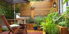 That fence. 3 questions for Andrea Bellamy, author of Small-Space Vegetable Gardens: http://buff.ly/1cfkyz9 #gardening #urban