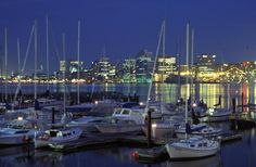 Halifax Harbour at night. Live, learn and play in Lunenburg, Nova Scotia, Canada. Learn english in Canada. Halifax Waterfront, Halifax Canada, O Canada, Nova Scotia, National Geographic Travel, Destinations, Dubai City, New Brunswick