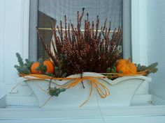 Autor: Silvia123 Balcony Garden, Apple Cider, Container Gardening, Fall Decor, Diy And Crafts, Seasons, Autumn, Halloween, Floral
