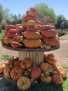 A giant stack of our beautiful heirloom pumpkins. Pumpkin Patch Farm, Best Pumpkin Patches, Fall Pumpkins, Halloween Pumpkins, Fall Halloween, Pumpkin Crafts, Cute Pumpkin, Fall Festival Activities, October Events