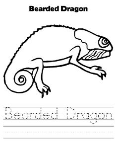 Bearded Dragon Coloring Page Through The Thousand Photographs
