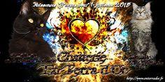 Mariage prévu pour Automne 2015 entre Guadeloupe de la Combe d'Aubagnac et SpellBound's Ace Of Spades