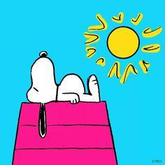#peanuts #Snoopy
