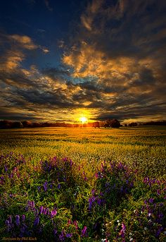 "Just Believe   ""Just Believe"" Horizons by Phil Koch. Milwauk…   Flickr"