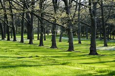 This garden is a peaceful retreat from New York City life and a wonderful cultural experience.