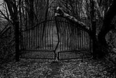 Would you go through the gates?