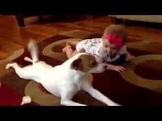 Dog Caught On Video Teaching Baby How To Crawl