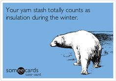 Your yarn stash totally counts as insulation during the winter.