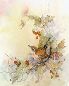 Anita Pegler - wren