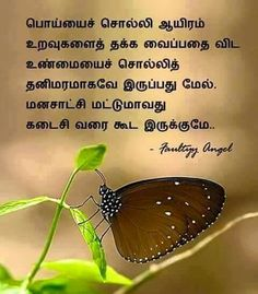 264 Best Tamil Quotes Images Unique Quotes True Words Comment Images